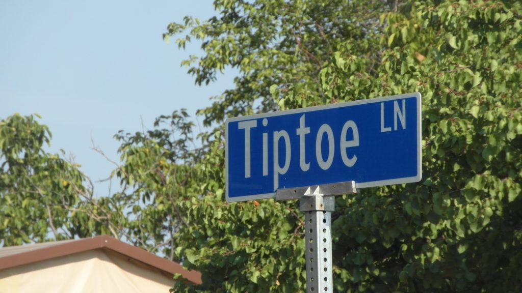 tip-toe-4